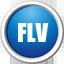 FLV视频转换器 11.5 官方版