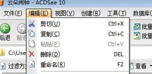 在ACDSee中将图片重新命名的详细操作步骤