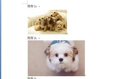 以下面的这几个图片为例子