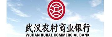 武汉农村商业银行网银向导怎么下载安装-农商行网银向导下载安装的方法