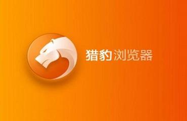 猎豹浏览器添加翻译插件的具体操过程