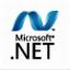 .net framework 4.0.30319