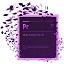 Adobe Premiere Pro cs4 綠色中文版
