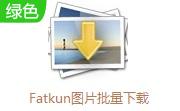Fatkun图片批量下载段首LOGO