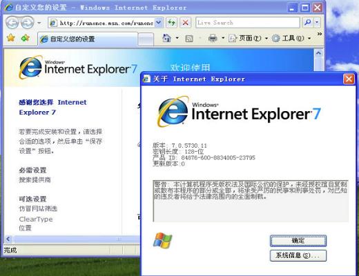 Internet Explorer 7截图0
