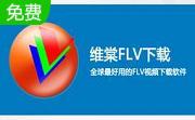维棠FLV视频段首LOGO