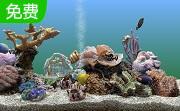 热带鱼屏保段首LOGO