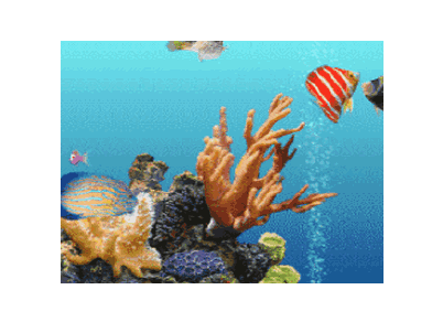 海底世界動態屏保