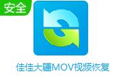 佳佳大疆MOV视频恢复段首LOGO