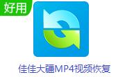 佳佳大疆MP4视频恢复段首LOGO