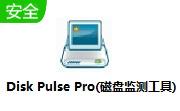 Disk Pulse Pro(磁盘监测工具)段首LOGO